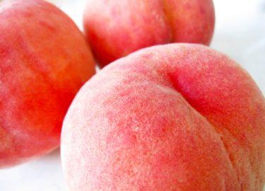 桃やぶどうなどの美味しいフルーツが選べる|パイオラックス(5988)の株主優待カタログが届いての感想