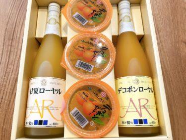 九州地方の産品が貰えます!|ニフコ(7988)の株主優待が届いての感想