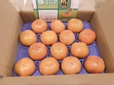 レシップホールディングス(7213)の株主優待が到着!Lサイズの岐阜県特産の富有柿が貰えます♪